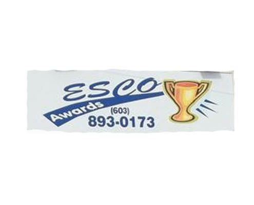 ESCO awards logo